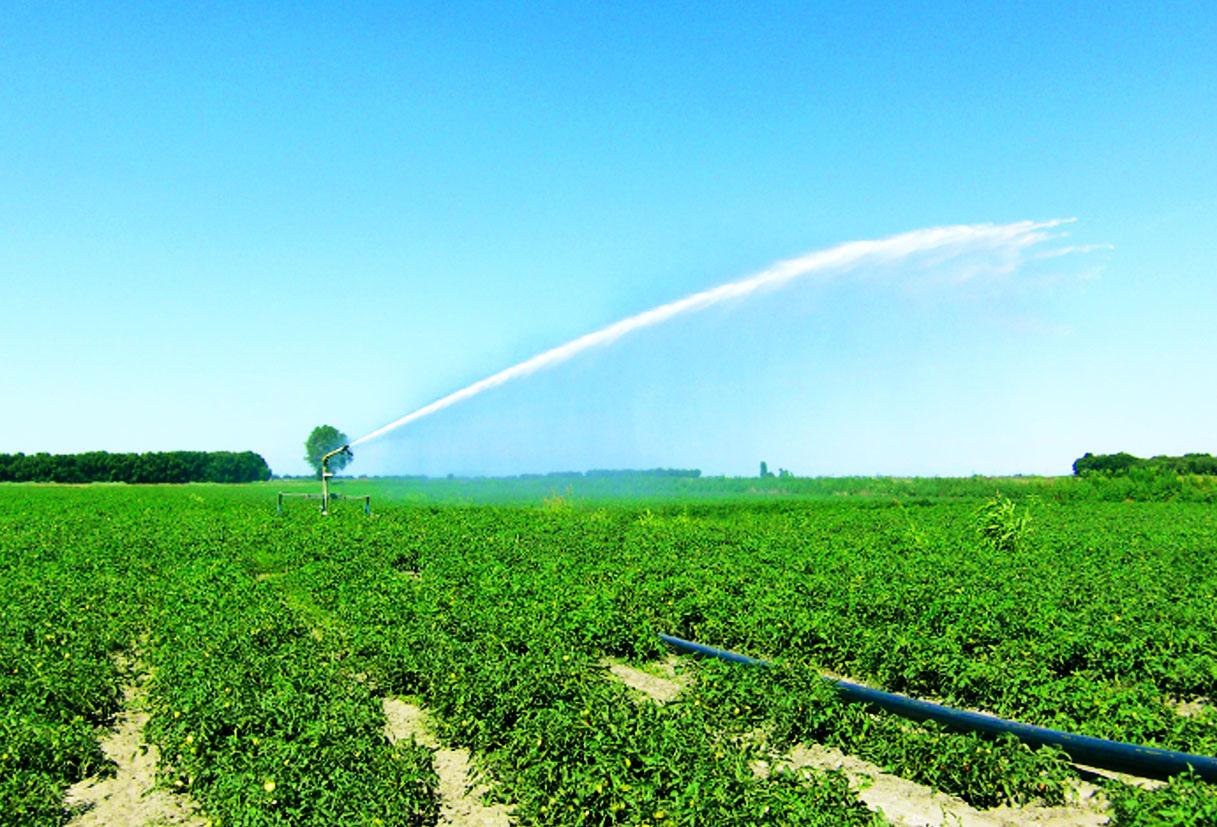 Irrigazione1-2