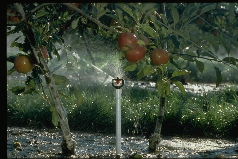 Irrigazione1-6